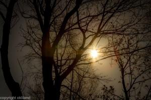 Solnedgang i Sandnes