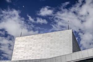 operaen i bjørvika fugler